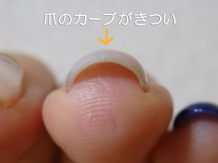 爪のカーブがきつい