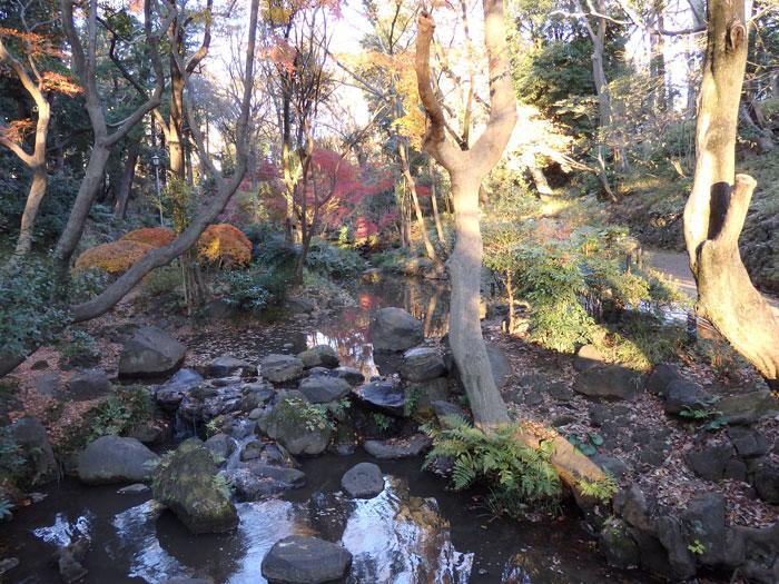 初冬の有栖川公園