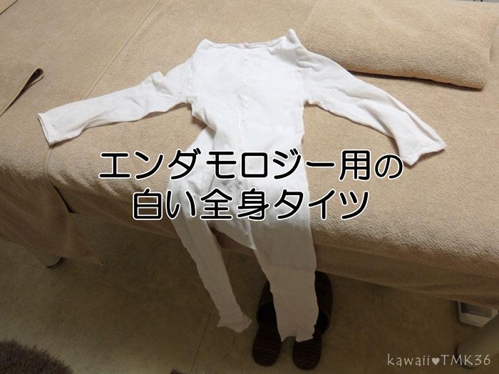 エンダモロジー用の白い全身タイツ