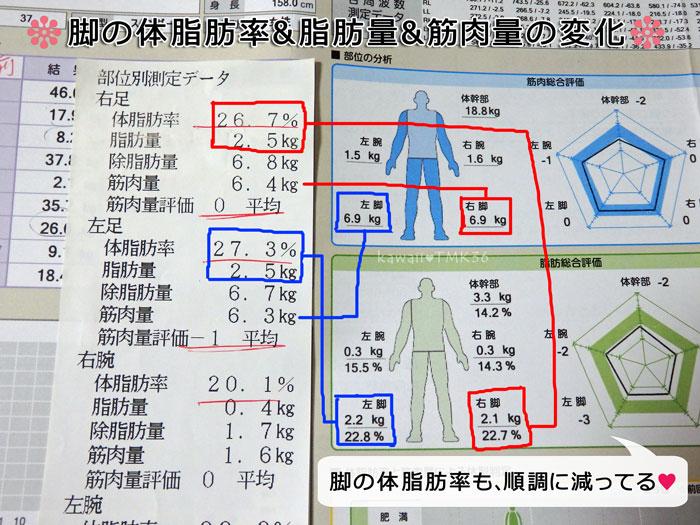 3ヶ月間の脚の体脂肪率の変化