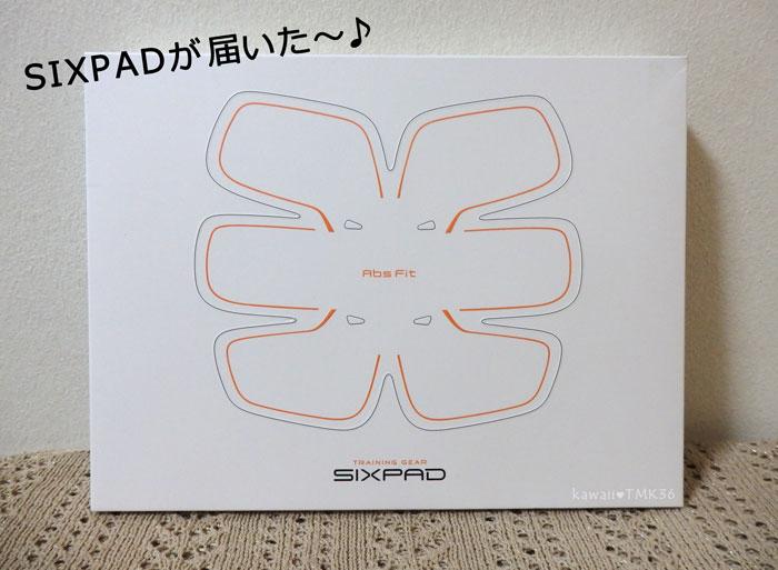 SIXPADが届いた~♪