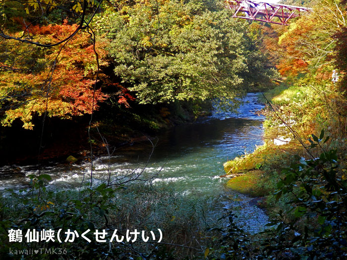 山中温泉の鶴仙峡