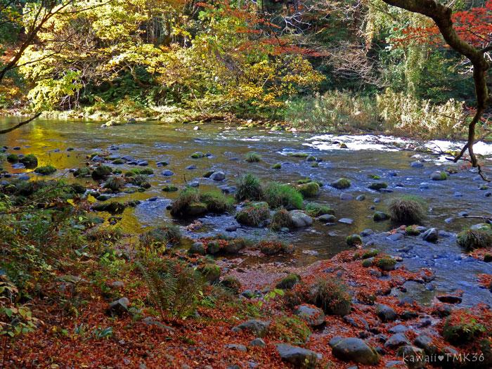 鶴仙峡のあやとり橋~こおろぎ橋を散策(1)