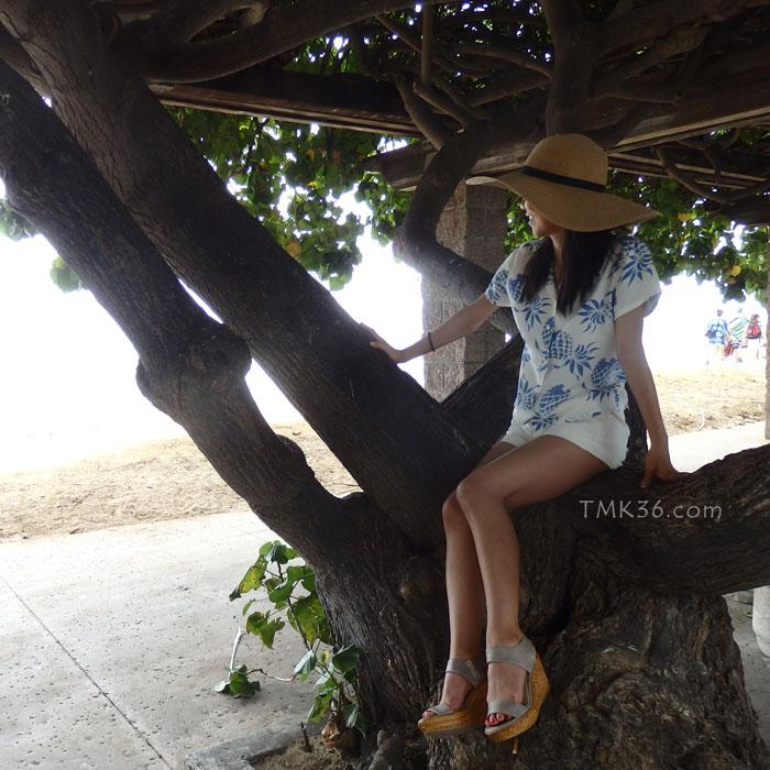 木陰で休憩中~♪