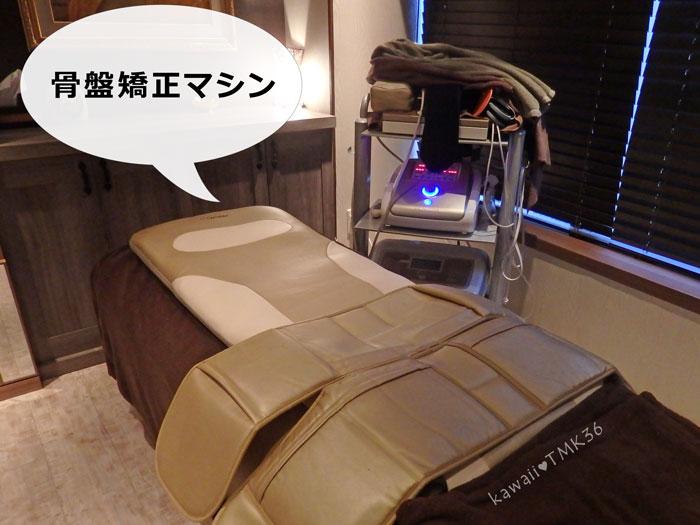 ライエクサ290(APTS)の骨盤矯正マシン エアーツイスター