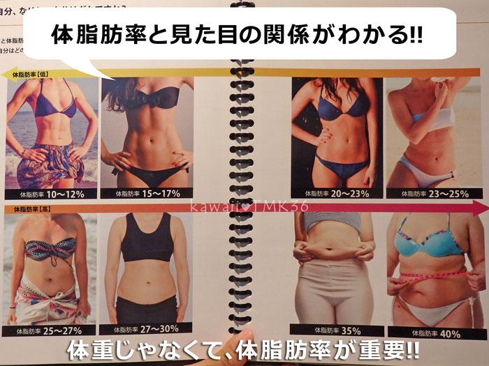 体脂肪率と見た目の関係(ライザップの無料カウンセリング)