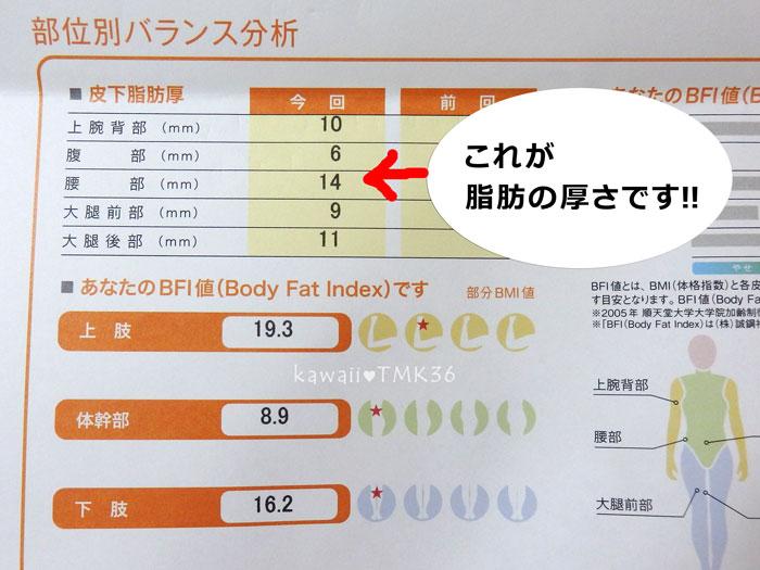 BFI画像測定でわかった脂肪の厚さ(全身5ヶ所)