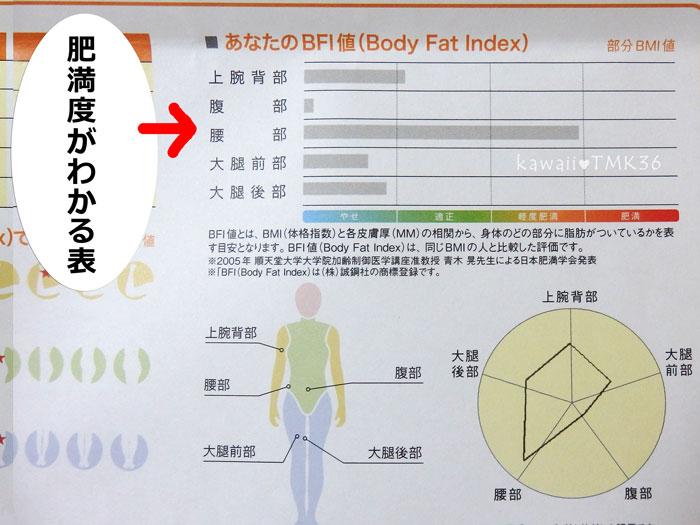 BFI画像測定でわかった、全身の脂肪の厚さ(標準値との比較)