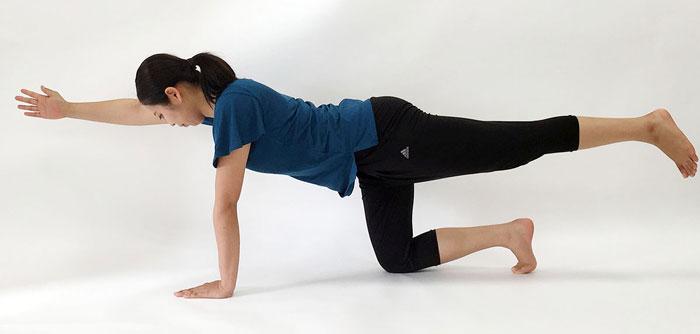 体幹トレーニングの基本姿勢