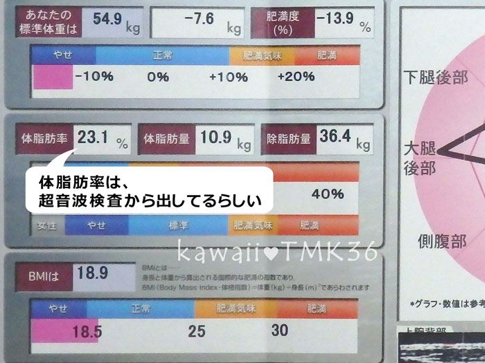 DSクリニックの超音波脂肪厚測定データ(1)