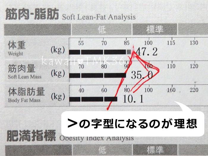 体重・筋肉量・体脂肪量のバランス