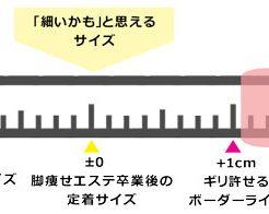 ふくらはぎスケール(1)