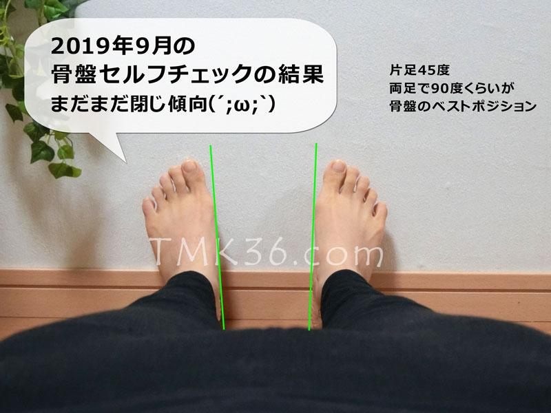 2019年9月の骨盤セルフチェックの結果(補助線つき)