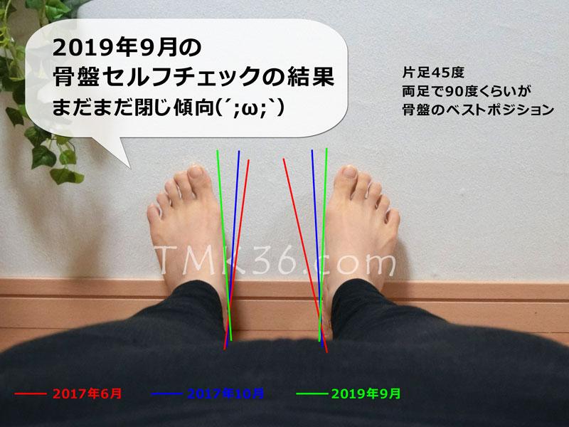 2019年9月の骨盤セルフチェックの結果(補助線つき比較用)