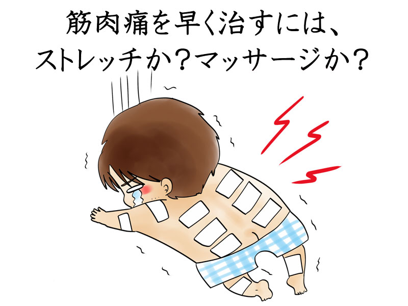 筋肉 痛 ダイエット
